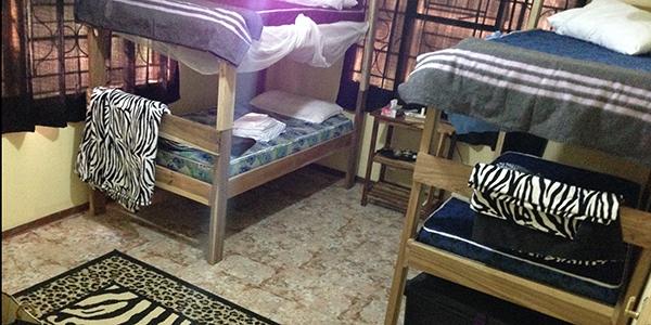 Giraffe Bedroom